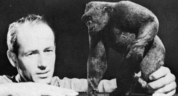 Ray Harryhaussen con su maqueta de King Kong