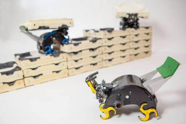 Termitas robóticas