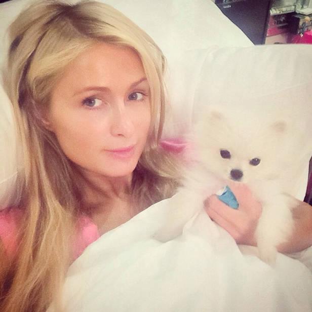 #WakeUpCall de Paris Hilton (@parishilton)