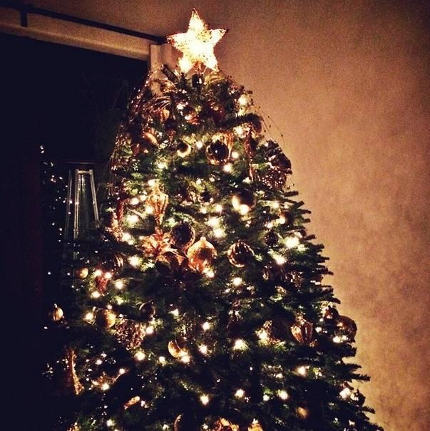 Navidad-Árbol-de-Navidad- Alessandra- Ambrosio-Vanidad