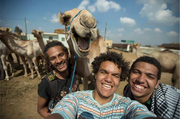 Uno de los selfies más virales del año... el camello sonriente. Foto (Facebook) /antikkaphotography