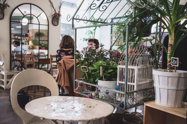 Cafe-Botanico-02_buena