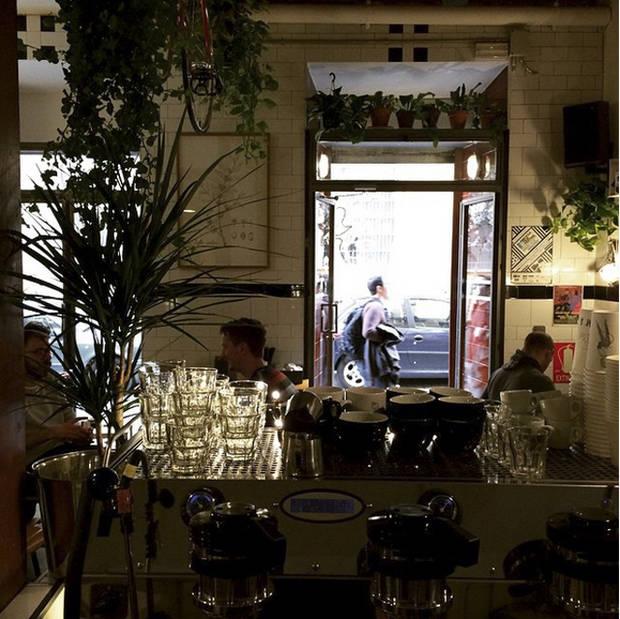 mejor cafe vanidad Toma Cafe2