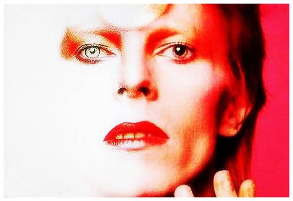Bowie_Vanidad