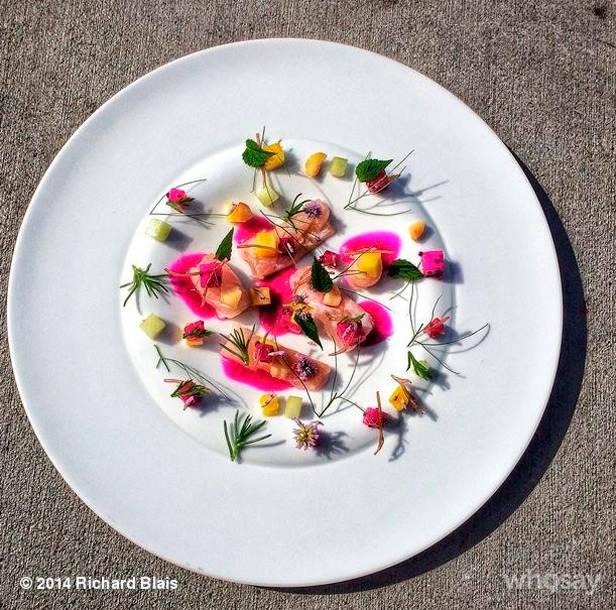 instagram-dieta-vanidad-6