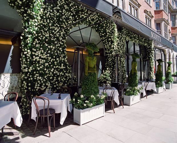 terrazas_internacionales_londres_dior