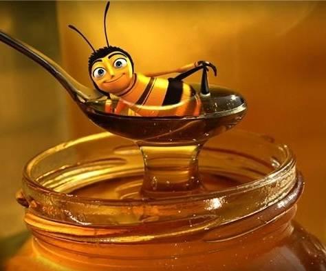 Ingredientes de la cosmetica natural miel.8
