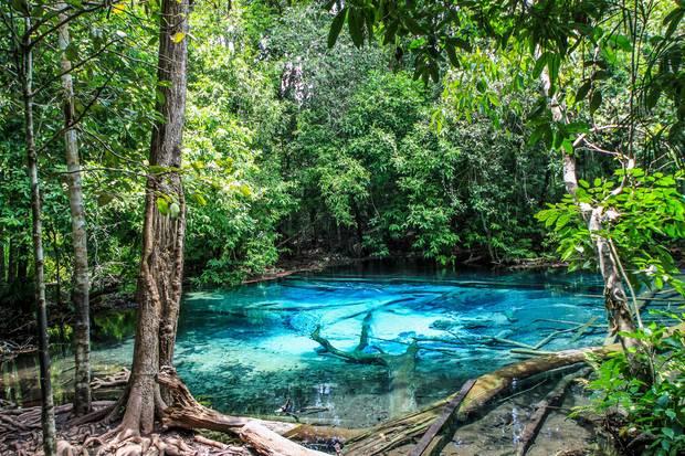 lagos_y_piscinas_naturales_emerald_pool_tailandia