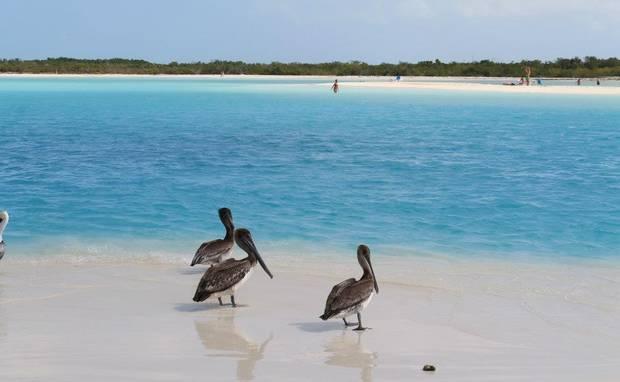 7_playas_para_este_verano_Cayo_Largo_Cuba