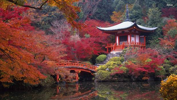 escapada_kioto_japon-5