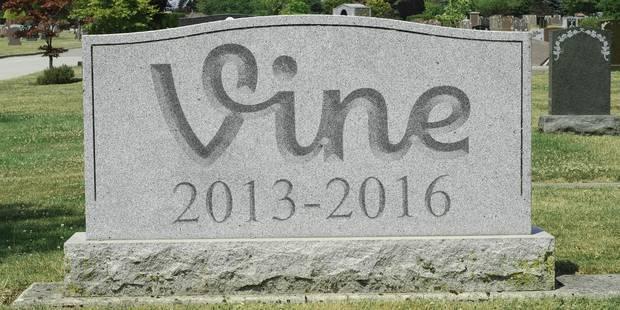 vine_vanidad_2