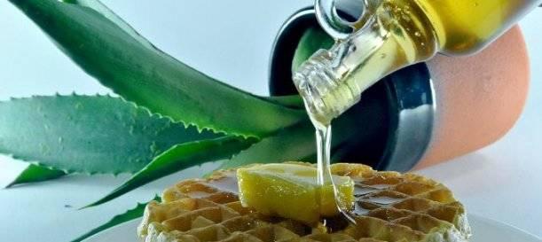 azucar-blanco-enemigo-alimentacion_agave 2 - vanidad - 6