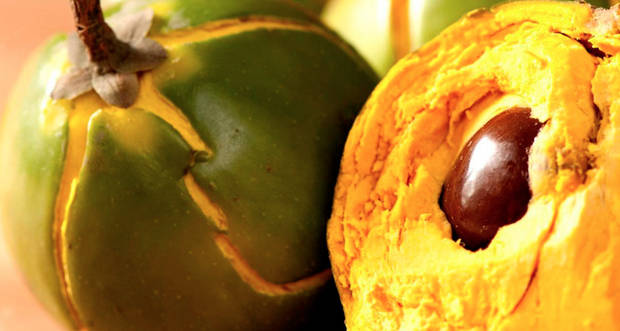 azucar-blanco-enemigo-alimentacion_Lucuma - vanidad - 7