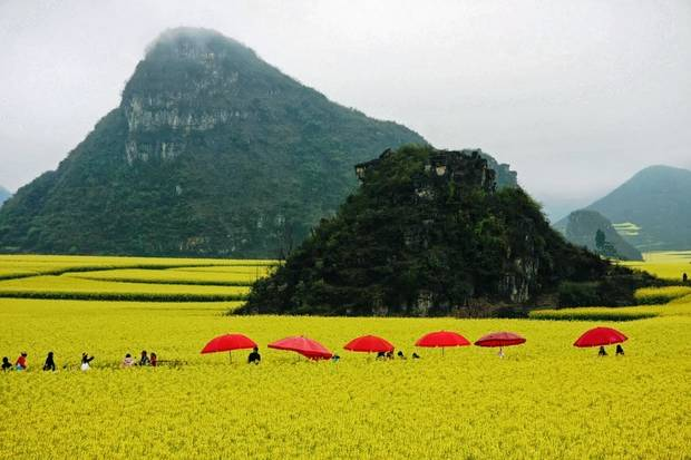Lugares curiosos La floración de colza en China
