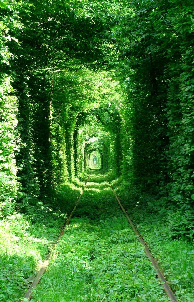 lugares curiosos Túnel del amor en Ucrania