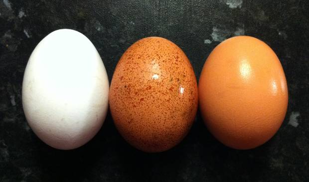 esto tambien son superfoods_huevos