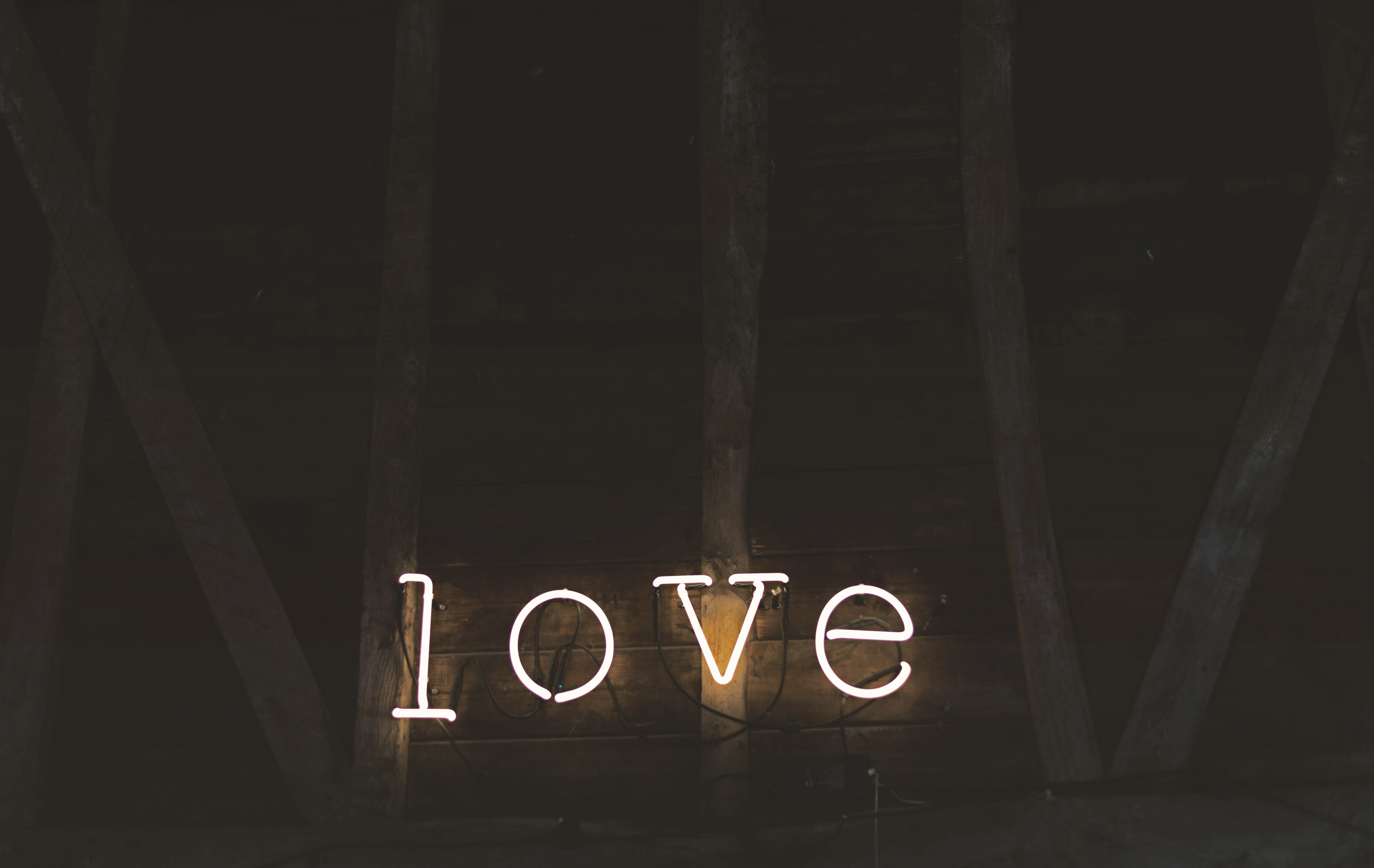 millie amor