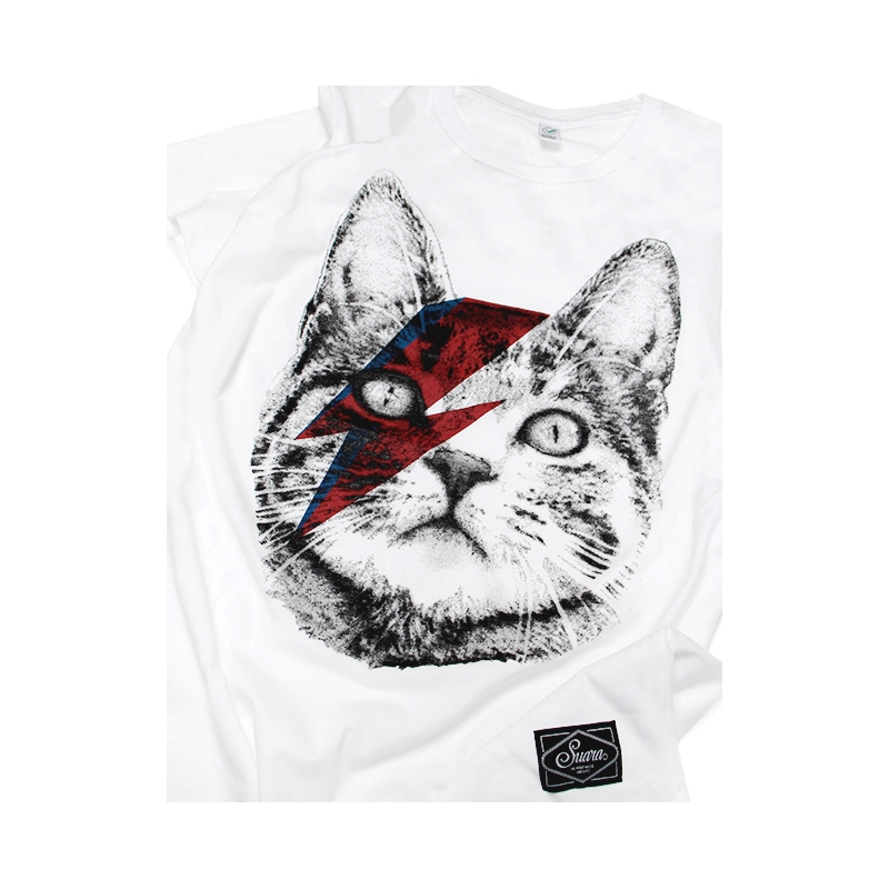 dia gato cat-bowie-chica