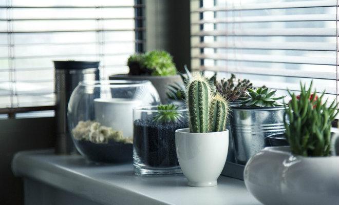 Lecciones de estilo que aprendimos de las gemelas Olsen - image plantas on https://www.vanidad.es