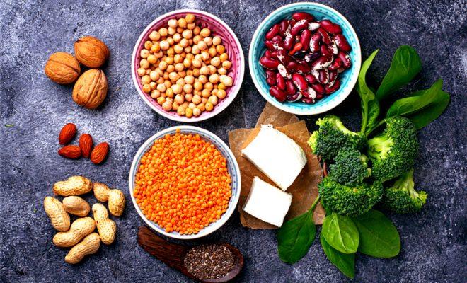 proteina sin carne portada